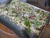 6-frischer-zwiebelkuchen